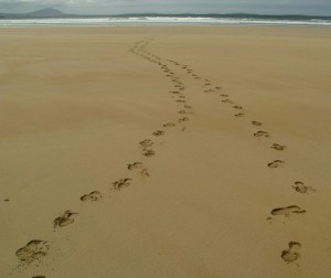 claggan island beach